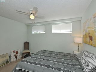 Photo 13: 201 1025 Inverness Rd in VICTORIA: SE Quadra Condo Apartment for sale (Saanich East)  : MLS®# 759313
