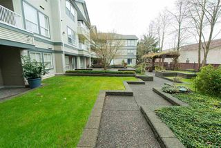 Photo 15: 110 6385 121 Street in Surrey: Panorama Ridge Condo for sale : MLS®# R2224904