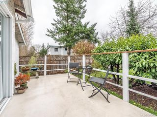 Photo 13: 76 Hampton Rd in VICTORIA: SW Tillicum Single Family Detached for sale (Saanich West)  : MLS®# 775399