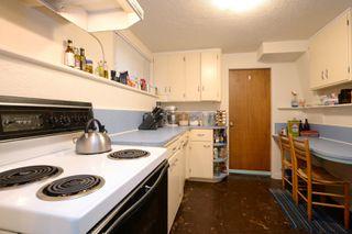 Photo 16: 2428 Dalhousie St in VICTORIA: OB Estevan Single Family Detached for sale (Oak Bay)  : MLS®# 777022