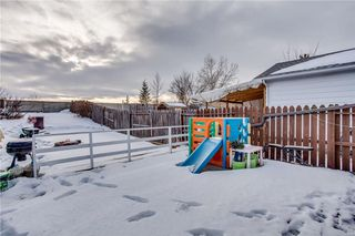 Photo 44: 111 ERIN RIDGE Road SE in Calgary: Erin Woods House for sale : MLS®# C4162823