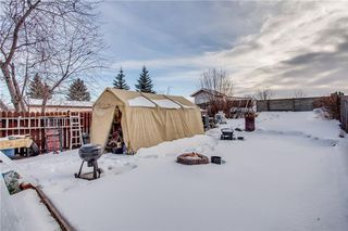 Photo 39: 111 ERIN RIDGE Road SE in Calgary: Erin Woods House for sale : MLS®# C4162823