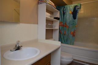 Photo 22: 11825 55 Street in Edmonton: Zone 06 House for sale : MLS®# E4124275
