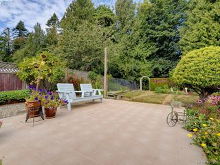 Photo 20: 6538 E Grant Rd in SOOKE: Sk Sooke Vill Core House for sale (Sooke)  : MLS®# 800804