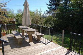 Photo 19: 3552 Calumet Avenue in VICTORIA: SE Quadra Single Family Detached for sale (Saanich East)  : MLS®# 408915