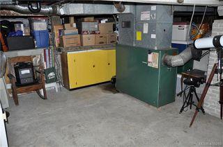 Photo 15: 3552 Calumet Avenue in VICTORIA: SE Quadra Single Family Detached for sale (Saanich East)  : MLS®# 408915