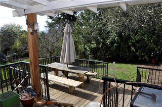 Photo 17: 3552 Calumet Ave in VICTORIA: SE Quadra Single Family Detached for sale (Saanich East)  : MLS®# 812576