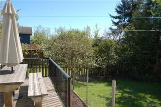 Photo 16: 3552 Calumet Avenue in VICTORIA: SE Quadra Single Family Detached for sale (Saanich East)  : MLS®# 408915