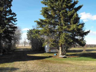 Photo 5: 74079 Twp Rd 550 Road: Rural Two Hills County House for sale : MLS®# E4155177