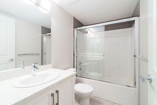 """Photo 16: 31 23986 104 Avenue in Maple Ridge: Albion Townhouse for sale in """"SPENCER BROOK"""" : MLS®# R2379939"""
