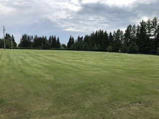 Photo 4: 39 24400 TWP 552: Rural Sturgeon County Rural Land/Vacant Lot for sale : MLS®# E4163660