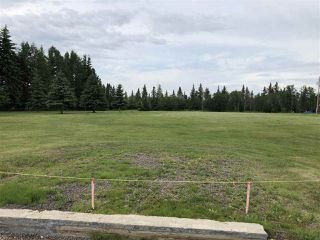 Photo 3: 39 24400 TWP 552: Rural Sturgeon County Rural Land/Vacant Lot for sale : MLS®# E4163660