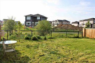 Photo 18: 12928 207 Street in Edmonton: Zone 59 House for sale : MLS®# E4165382