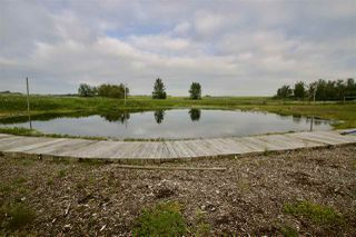 Photo 7: 50139 RGE RD 230: Rural Leduc County House for sale : MLS®# E4166918