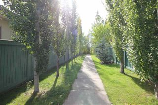 Photo 27:  in Edmonton: Zone 55 House for sale : MLS®# E4173534