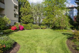 "Photo 24: 309 20460 54 Avenue in Langley: Langley City Condo for sale in ""WHEATCROFT MANOR"" : MLS®# R2454205"