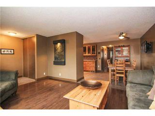 Photo 7: 8 APPLETREE Way SE in Calgary: Applewood Residential Detached Single Family for sale : MLS®# C3638522