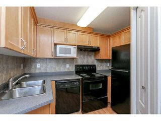"Photo 12: 302 189 ONTARIO Place in Vancouver: Main Condo for sale in ""Mayfair"" (Vancouver East)  : MLS®# V1132012"