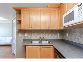 "Photo 14: 302 189 ONTARIO Place in Vancouver: Main Condo for sale in ""Mayfair"" (Vancouver East)  : MLS®# V1132012"