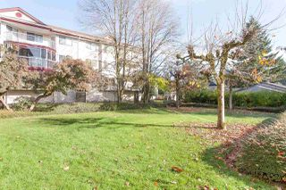 "Photo 17: 106 2414 CHURCH Street in Abbotsford: Abbotsford West Condo for sale in ""Autumn Terrace"" : MLS®# R2008115"