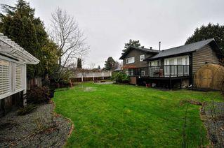 Photo 18: 1725 58 Street in Delta: Beach Grove House for sale (Tsawwassen)  : MLS®# R2128387