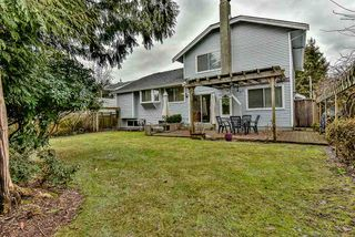 Photo 17: 14266 101A Avenue in Surrey: Whalley House for sale (North Surrey)  : MLS®# R2133591