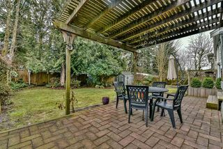Photo 18: 14266 101A Avenue in Surrey: Whalley House for sale (North Surrey)  : MLS®# R2133591