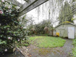 "Photo 11: 4855 COLLINGWOOD Street in Vancouver: Dunbar House for sale in ""Dunbar"" (Vancouver West)  : MLS®# R2155905"