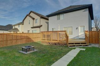 Photo 33: 131 PRESTWICK Drive SE in Calgary: McKenzie Towne Detached for sale : MLS®# C4210420