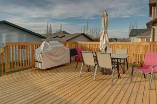 Photo 27: 131 PRESTWICK Drive SE in Calgary: McKenzie Towne Detached for sale : MLS®# C4210420