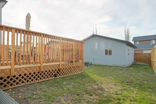 Photo 29: 131 PRESTWICK Drive SE in Calgary: McKenzie Towne Detached for sale : MLS®# C4210420