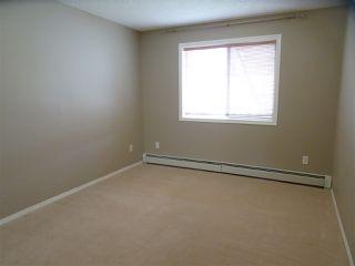 Photo 11: 216 17459 98A Avenue in Edmonton: Zone 20 Condo for sale : MLS®# E4143209
