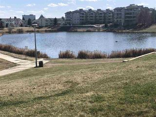 Photo 16: 216 17459 98A Avenue in Edmonton: Zone 20 Condo for sale : MLS®# E4143209