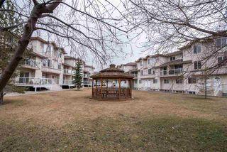 Photo 3: 49 2505 42 Street in Edmonton: Zone 29 Townhouse for sale : MLS®# E4151911