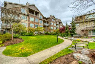 "Photo 20: 409 250 SALTER Street in New Westminster: Queensborough Condo for sale in ""PADDLERS LANDING"" : MLS®# R2359243"