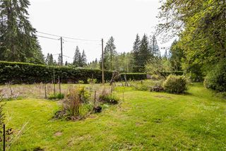 Photo 6: 3060 SUNNYSIDE Road: Anmore House for sale (Port Moody)  : MLS®# R2366520