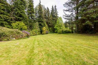 Photo 5: 3060 SUNNYSIDE Road: Anmore House for sale (Port Moody)  : MLS®# R2366520
