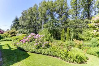 Photo 20: 3125 NOEL Drive in Burnaby: Sullivan Heights House for sale (Burnaby North)  : MLS®# R2373813
