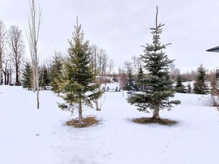 Photo 27: 3 28018 TWP ROAD 540: Rural Parkland County House for sale : MLS®# E4160411