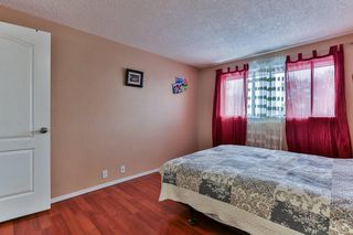 Photo 14: 35 Abergale Close NE in Calgary: Abbeydale Detached for sale : MLS®# C4267496