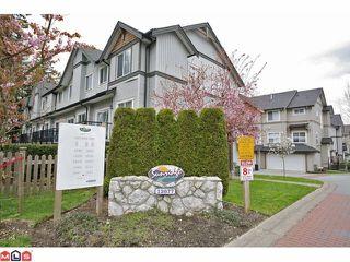 Photo 10: 51 12677 63RD Avenue in Surrey: Panorama Ridge Condo for sale : MLS®# F1209815