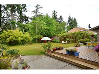 Photo 9: 4858 8A Avenue in Tsawwassen: Tsawwassen Central House for sale : MLS®# V955867