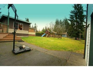 Photo 13: 4510 MARTINGALE Crescent in Langley: Salmon River House for sale : MLS®# F1403365