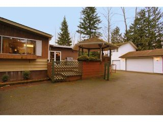 Photo 10: 4510 MARTINGALE Crescent in Langley: Salmon River House for sale : MLS®# F1403365