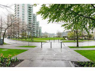 "Photo 19: 504 1680 BAYSHORE Drive in Vancouver: Coal Harbour Condo for sale in ""BAYSHORE GARDENS"" (Vancouver West)  : MLS®# V1059517"