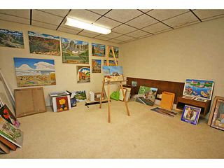 Photo 18: 12340 LAKE MORAINE Rise SE in CALGARY: Lk Bonavista Estates Residential Detached Single Family for sale (Calgary)  : MLS®# C3637305
