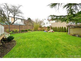 Photo 20: 976 Wollaston St in VICTORIA: Es Esquimalt House for sale (Esquimalt)  : MLS®# 693505