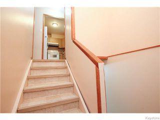 Photo 12: 141 Angus Street in WINNIPEG: North End Residential for sale (North West Winnipeg)  : MLS®# 1520290
