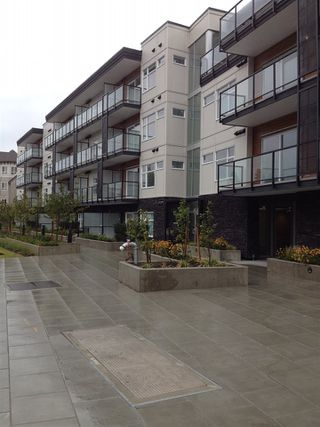 """Photo 1: 311 12070 227 Street in Maple Ridge: East Central Condo for sale in """"STATION ONE"""" : MLS®# R2022157"""