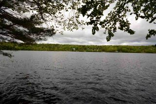 Photo 26: 454 PONDEROSA Drive in Lake Echo: 31-Lawrencetown, Lake Echo, Porters Lake Residential for sale (Halifax-Dartmouth)  : MLS®# 201613748